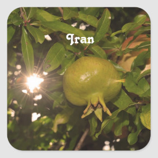 Iran Pomegranate Square Sticker