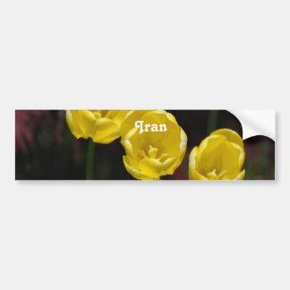 Iranian Tulip Bumper Stickers