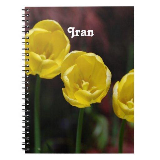 Iranian Tulip Notebooks