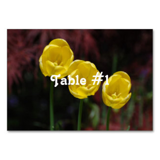Iranian Tulip Table Card