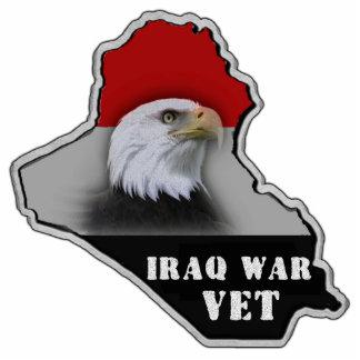 Iraq War Military Veteran Photo Sculpture Magnet