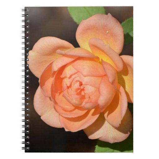 Iraqi Rose Spiral Note Book