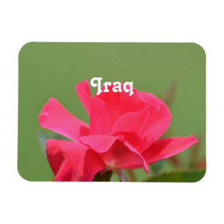 Iraqi Rose Flexible Magnet
