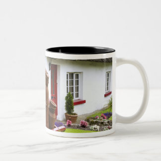 Ireland, Adare. Metal containers on cart and Two-Tone Mug