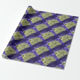 Irenic Abjurer Fractal 9 Wrapping Paper
