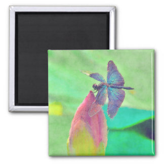 Iridescent Blue Dragonfly on Waterlily Magnet