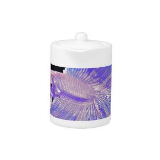 Iridescent Purple Fighting Fish
