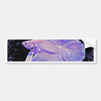 Iridescent Purple Fighting Fish Bumper Sticker