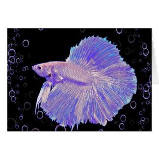 Iridescent Purple Fighting Fish Card