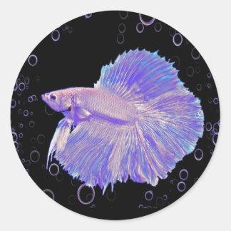 Iridescent Purple Fighting Fish Classic Round Sticker