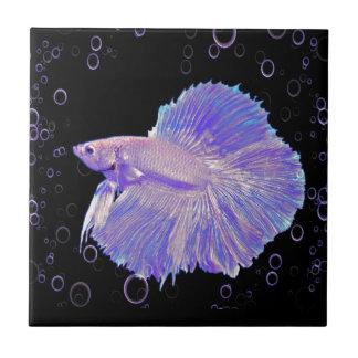 Iridescent Purple Fighting Fish Tile