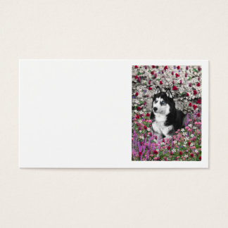 Irie the Siberian Husky in Flowers