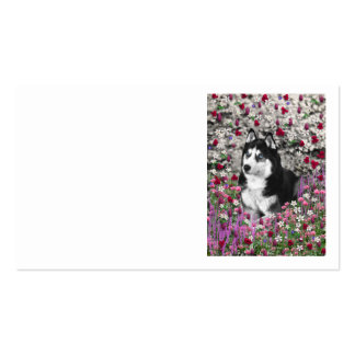 Irie the Siberian Husky in Flowers Business Cards