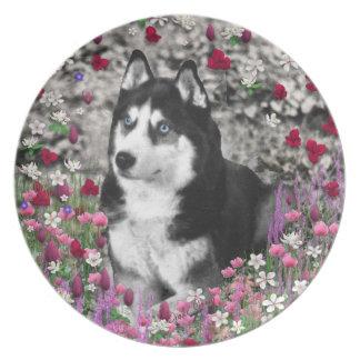 Irie the Siberian Husky in Flowers Dinner Plate