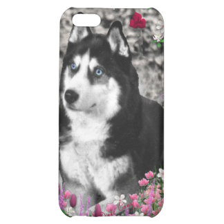 Irie the Siberian Husky in Flowers Case For iPhone 5C