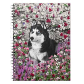Irie the Siberian Husky in Flowers Note Books