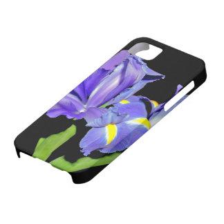 Iris 8 iPhone 5 cases
