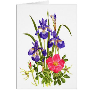 Iris and Beach Rose Note Card