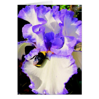 Iris and Bee Note Card