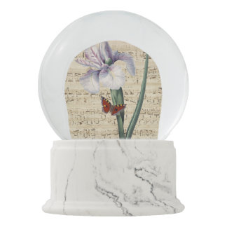 iris and butterfly music snow globe