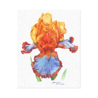 Iris Botanical watercolor Canvas Print