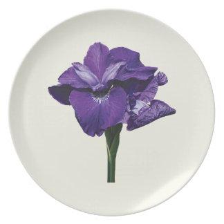 Iris Caesar Morgan Plates