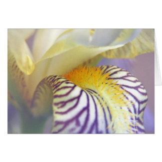 Iris dream note card