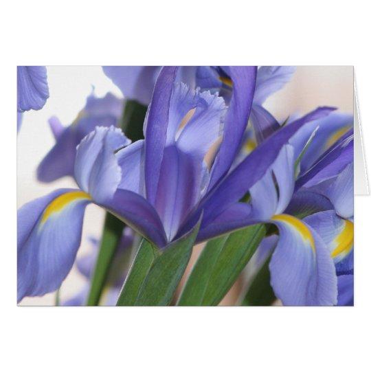 Iris Explosion card