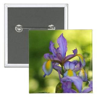 Iris flower button