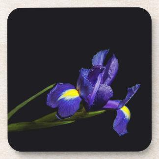 Iris flower coaster