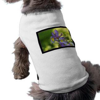 Iris flower dog clothing