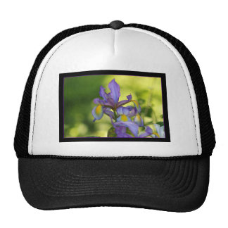 Iris flower mesh hat