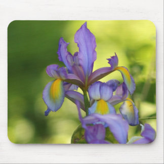 Iris flower mouse pad