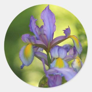 Iris flower Stickers