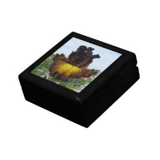"""Iris Jewelry Box / Gift Box - """"TUSCAN SUMMER"""""""
