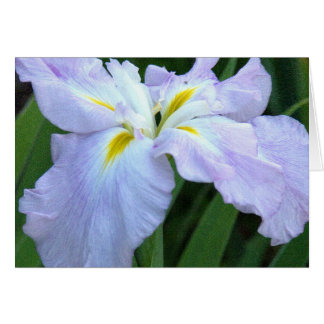 "IRIS/LAVENDER COLORED WITH WHITE &MUSTARD YELLOW"" GREETING CARD"