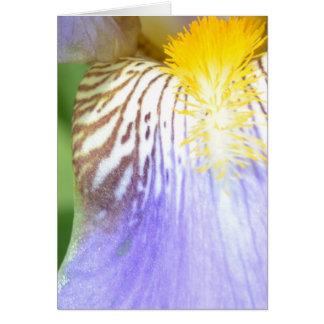 Iris Macro Note Card
