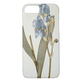 Iris Pallida, from `Les Liliacees', 1812 iPhone 7 Case