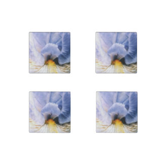 Iris Performer Stone Magnet