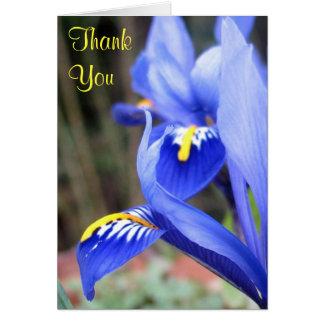 iris petals thank you note card
