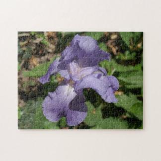 Iris, Photo Puzzle. Jigsaw Puzzle