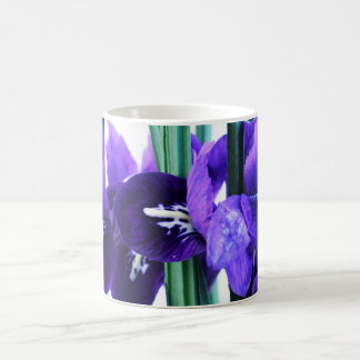 Iris Reticulata Mug