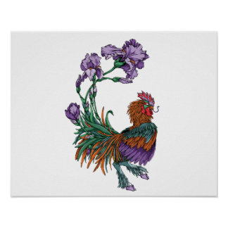 Iris Rooster Poster