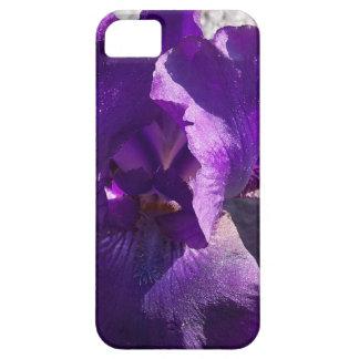 Iris Strength iPhone 5 Cases