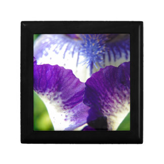 Iris Unfolding Gift Box