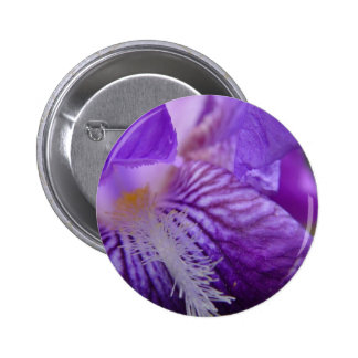 Iris Up Close Button