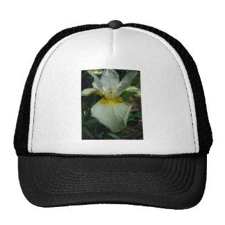 Iris White Cap