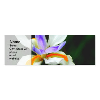 Iris Wild Fairy Double-Sided Mini Business Cards (Pack Of 20)
