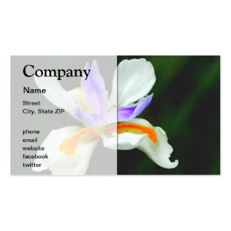 Iris Wild Fairy Double-Sided Standard Business Cards (Pack Of 100)