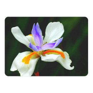 Iris Wild Fairy Custom Invitations